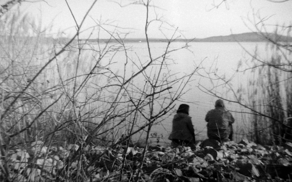 Markkleeberger See mit Gestrüpp